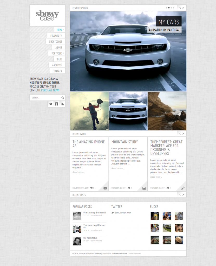 ShowyCase: Portfolio / Photography WP Theme