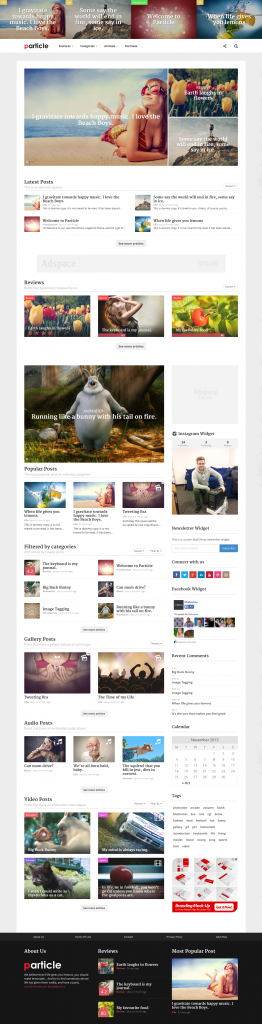 Particle: WordPress Magazine Theme