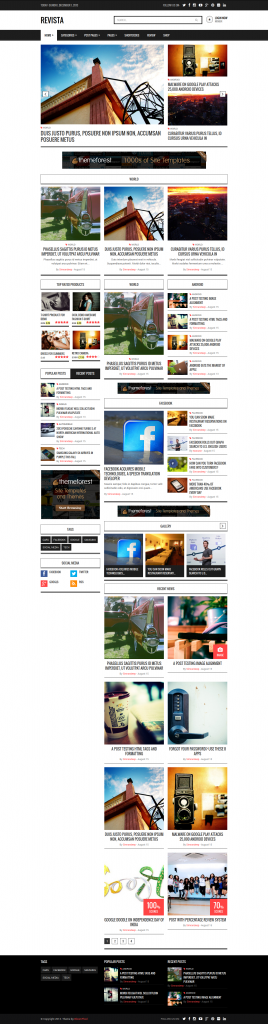 Revista: Ultimate Flat Magazine WordPress Theme