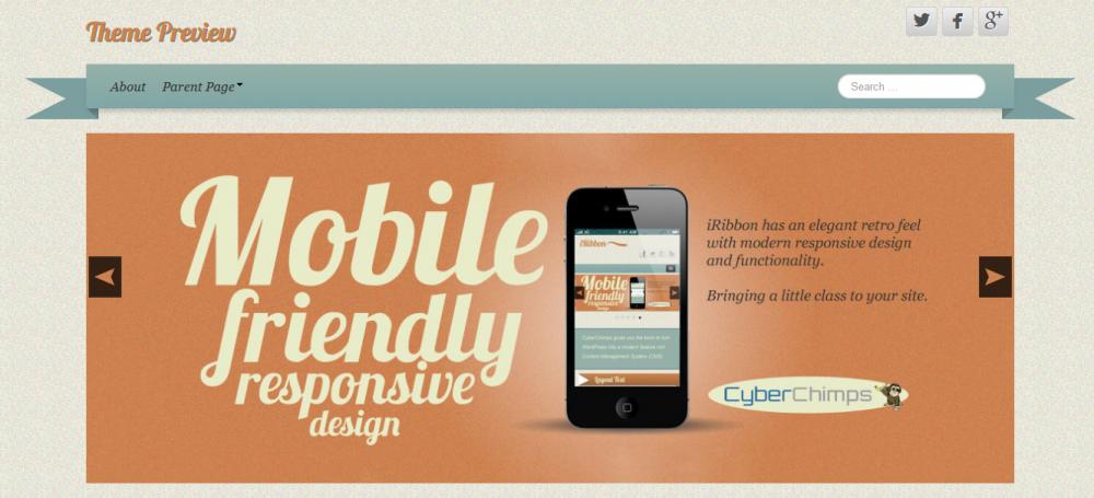 iRibbon: Free eCommerce WordPress Theme