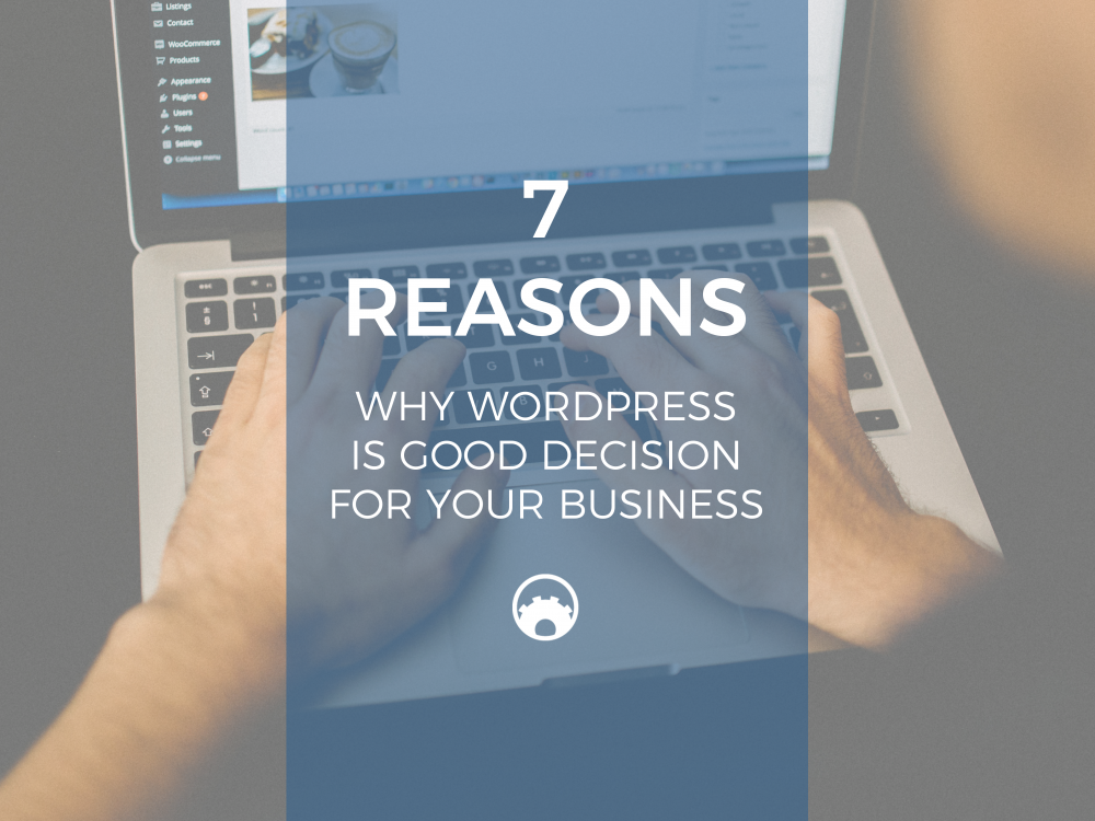 function-themes-7-reasons-why-wordpress